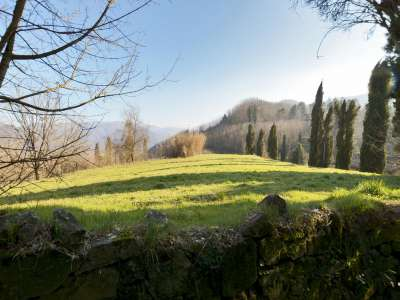 Image 32 | 7 bedroom villa for sale with 3 hectares of land, Lucca, Tuscany 215293
