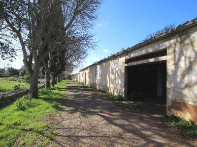 Image 12   12 bedroom villa for sale with 434 hectares of land, Maria de la Salut, Central Mallorca, Mallorca 215393
