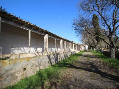 Image 13   12 bedroom villa for sale with 434 hectares of land, Maria de la Salut, Central Mallorca, Mallorca 215393