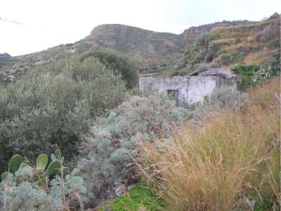 Image 15 | Farmhouse for sale with 2.32 hectares of land, Lipari, Messina, Sicily 215539