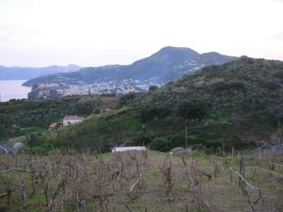 Image 5 | Farmhouse for sale with 2.32 hectares of land, Lipari, Messina, Sicily 215539