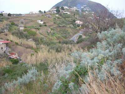 Image 8 | Farmhouse for sale with 2.32 hectares of land, Lipari, Messina, Sicily 215539