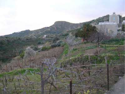 Image 9 | Farmhouse for sale with 2.32 hectares of land, Lipari, Messina, Sicily 215539
