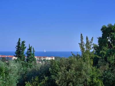 Image 2 | 8 bedroom villa for sale with 1.6 hectares of land, Antibes, Antibes Juan les Pins, French Riviera 215693