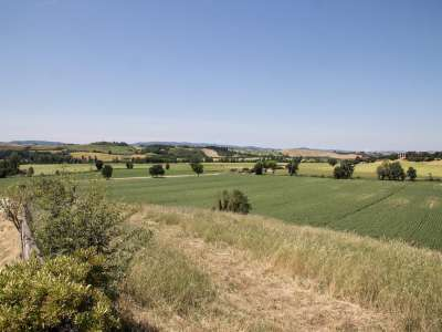 Image 28 | 12 bedroom farmhouse for sale with 13 hectares of land, Siena, Chianti 216618