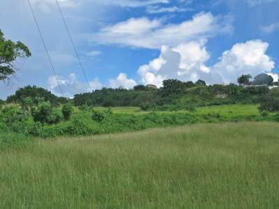 Image 5 | Plot of land for sale with 9.71 hectares of land, Saint Peter 217738
