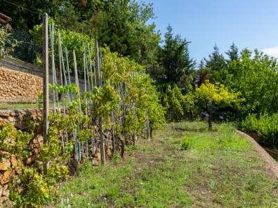 Image 17   5 bedroom villa for sale, Bergeggi, Savona, Liguria 218310