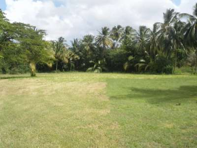 Image 3 | Plot of land for sale, Saint Peter 218547
