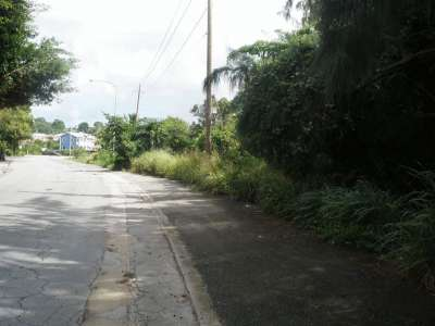 Image 9 | Plot of land for sale, Saint Peter 218547