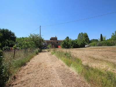 Image 3 | 4 bedroom farmhouse for sale with 0.4 hectares of land, Pisa, Tuscany 220064
