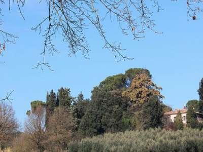 Image 10   5 bedroom villa for sale with 1 hectares of land, Foiano della Chiana, Siena, Chianti 220122