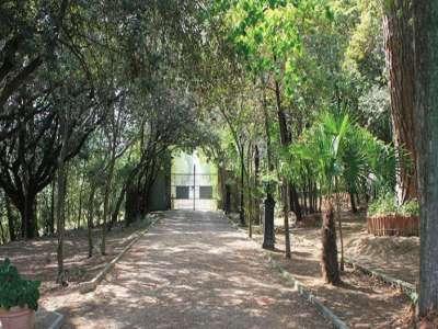 Image 3   5 bedroom villa for sale with 1 hectares of land, Foiano della Chiana, Siena, Chianti 220122
