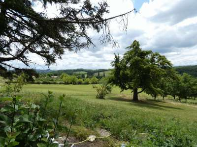 Image 5 | 5 bedroom house for sale with 58.12 hectares of land, Monflanquin, Lot-et-Garonne , Aquitaine 220303