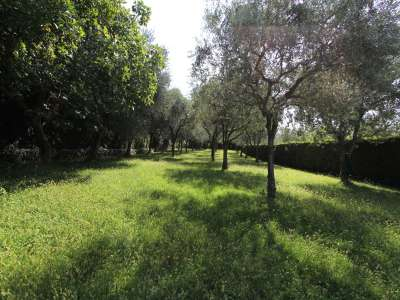 Image 19 | 4 bedroom villa for sale with 0.9 hectares of land, Bardolino, Verona, Lake Garda 221068