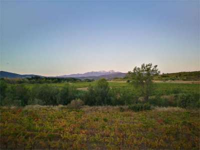 Image 1 | 4 bedroom commercial property for sale with 41.2 hectares of land, Cabestany, Pyrenees-Orientales , Languedoc-Roussillon 221487