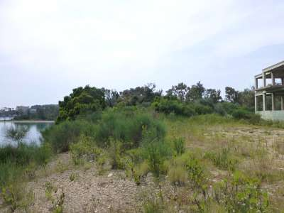 Image 4 | Plot of land for sale with 0.8 hectares of land, Dassia, Corfu, Ionian Islands 221791