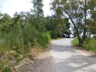Image 5 | Plot of land for sale with 0.8 hectares of land, Dassia, Corfu, Ionian Islands 221791