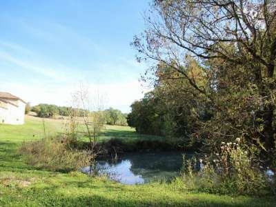 Image 5 | 5 bedroom farmhouse for sale with 1.9 hectares of land, Condom, Gers , Gascony 221804