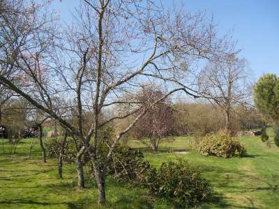 Image 17   5 bedroom house for sale with 1.51 hectares of land, Saint Savin, Hautes-Pyrenees , Gascony 223114