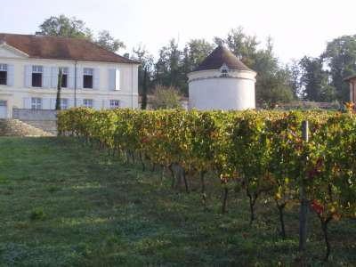 Image 4 | 8 bedroom French chateau for sale with 122 hectares of land, Angouleme, Charente , Poitou-Charentes 223873