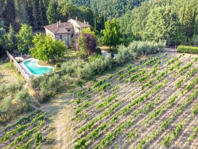 Image 24   4 bedroom farmhouse for sale with 16 hectares of land, Greve in Chianti, Florence, Chianti 224733