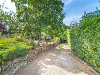 Image 25   4 bedroom farmhouse for sale with 16 hectares of land, Greve in Chianti, Florence, Chianti 224733