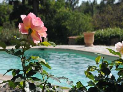 Image 3   6 bedroom house for sale with 3 hectares of land, Aups, Var , Provence 225675