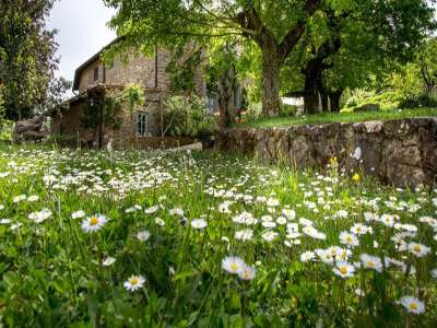 Image 16 | 10 bedroom villa for sale with 0.91 hectares of land, Valdarno, Florence, Chianti 225688