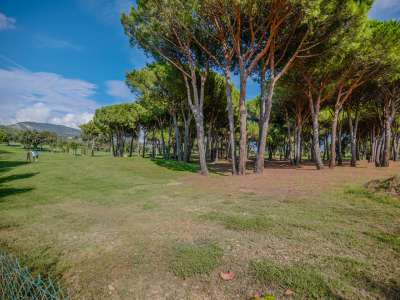 Image 8   5 bedroom villa for sale with 0.21 hectares of land, Grimaud, French Riviera 225776