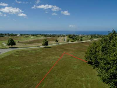 Image 3 | Plot of land for sale with 0.23 hectares of land, Apes Hill Golf, Apes Hill, Saint James 225833