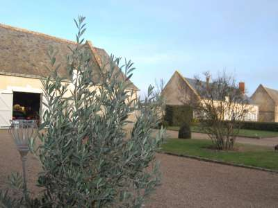 Image 23 | 10 bedroom manor house for sale with 9.6 hectares of land, Tours, Indre-et-Loire , Loire Valley 226262