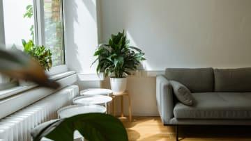 Vaut-il mieux faire du meublé ou du non meublé pour ma location?