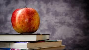 Comprendre l'usufruit: définition et droits