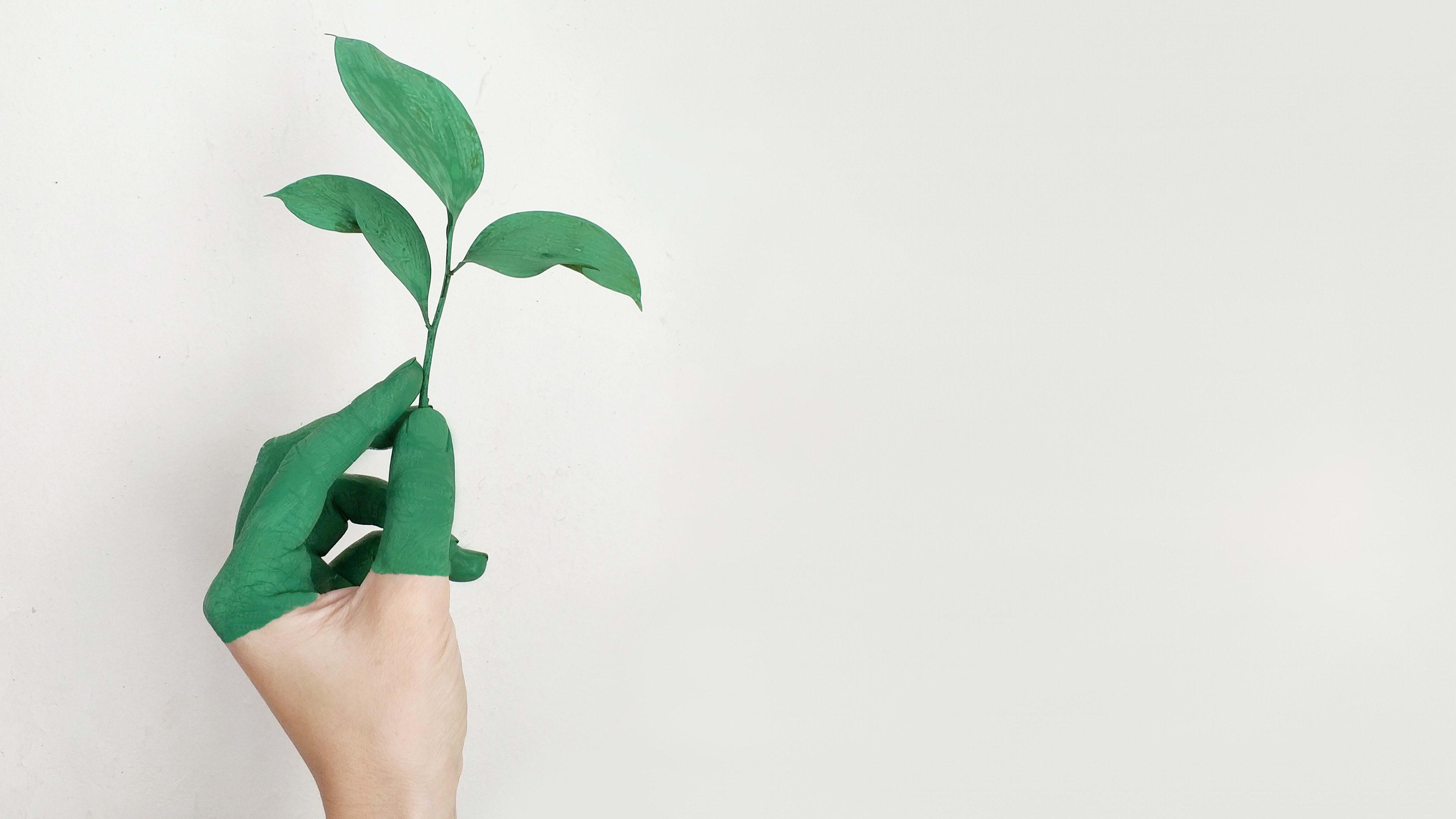 Quels sont les enjeux écologiques liés aux diagnostics immobiliers?