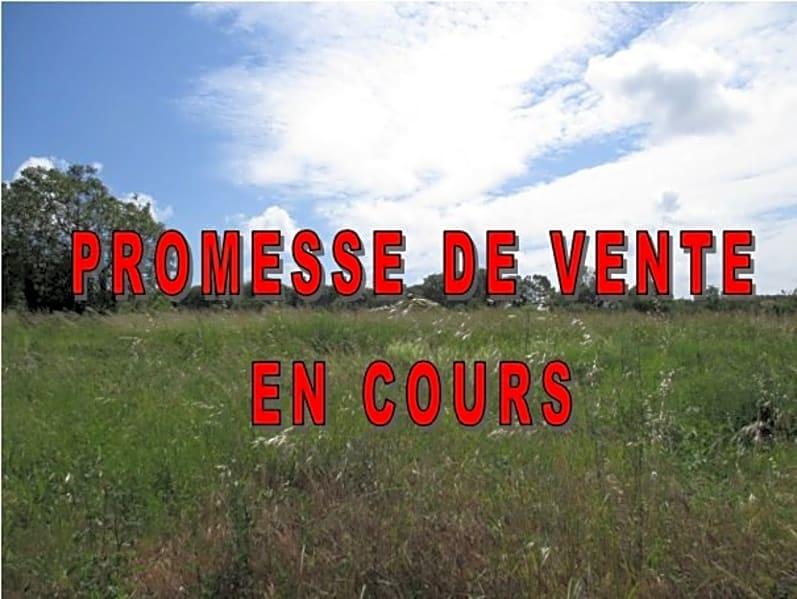 Terrain à vendre à Saint Vincent sur Jard
