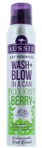 AUSSIE 180ML DRY S/POO WASH&BLOW KIWI