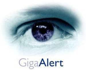 Giga alerte veille seo