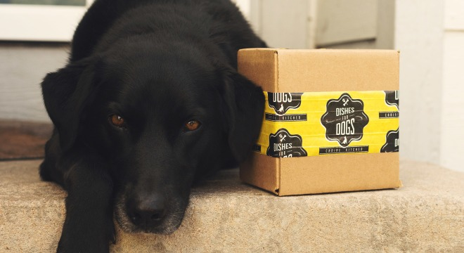 Custom packaging tape and dog