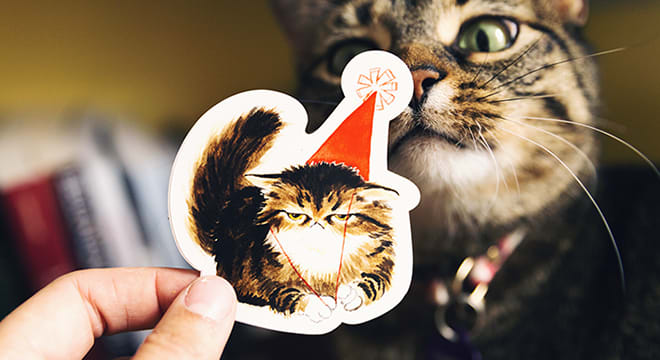 cat-stickers-image-3 (1)