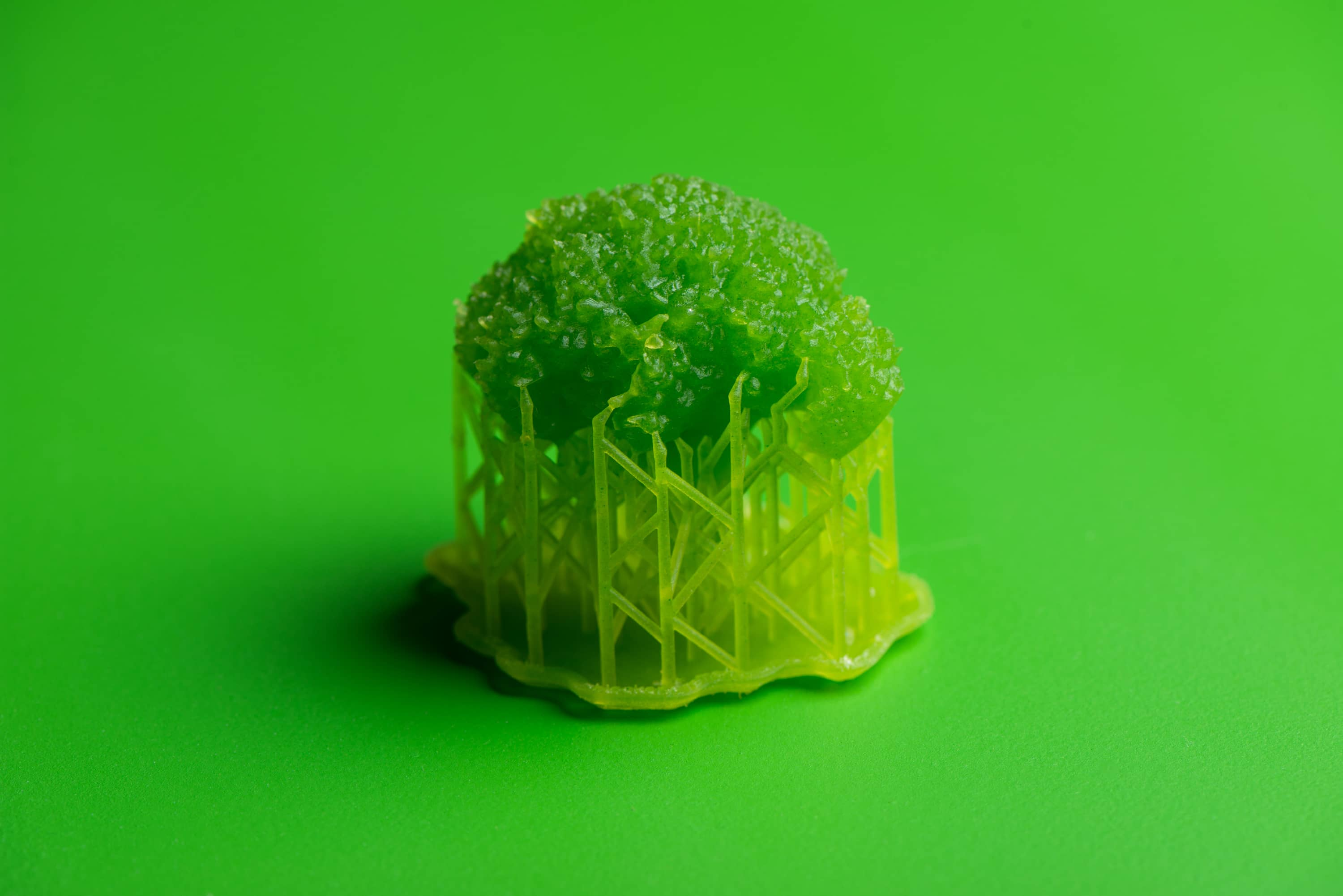 3d printed and dye broccoli