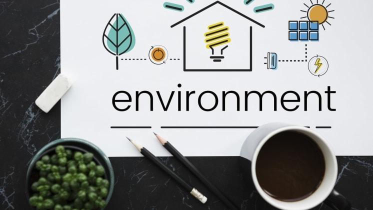 Thumbnail do post Sustentabilidade na indústria gráfica: 4 ações da PrintStore