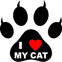 I Love My Cat Decal (4x4 / Vinyl Decal) large, primary, image