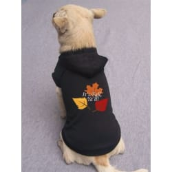 It's Fall Ya'll Pet Hoodie (X-Small) large, primary, image