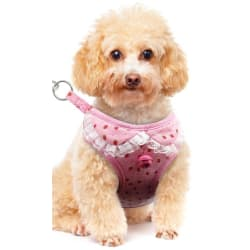 Strawberry, Flower - Adjustable Chest Dog Harness Jingle Bell with Leash (Pink Strawberry / large, primary, image