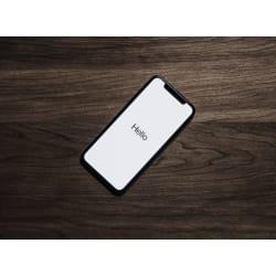 Phone Garb: Large size image