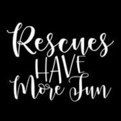 rescueshavemorefun: Large size image