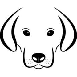 MYDOGSHOP : Large size image