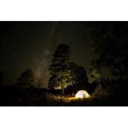 Fletcher Davis Camping: Large size image