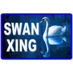 Swan Lover Gift
