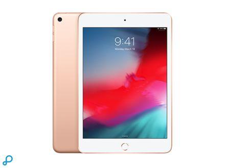 iPad mini: Wi-Fi - 256GB - Goud